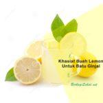 Berikut Khasiat Lemon Untuk Batu Ginjal