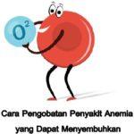 Cara Pengobatan Penyakit Anemia yang Dapat Menyembuhkan